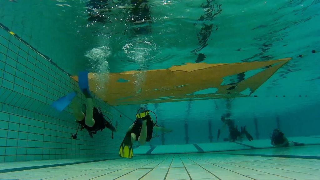Duikers in zwembad